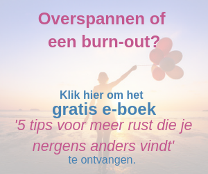 e-book overspannen of een burn-out