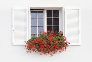 raamfolie - hoe breng je het beste plakplastic aan op je raam - raamfolie zonder bubbels